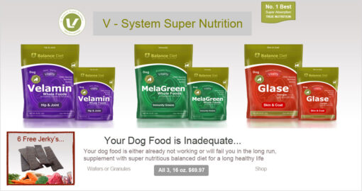 Balance Diet Premium Dog food V-multivitamin and muti nutritional food for dog for brest health and strong muscle