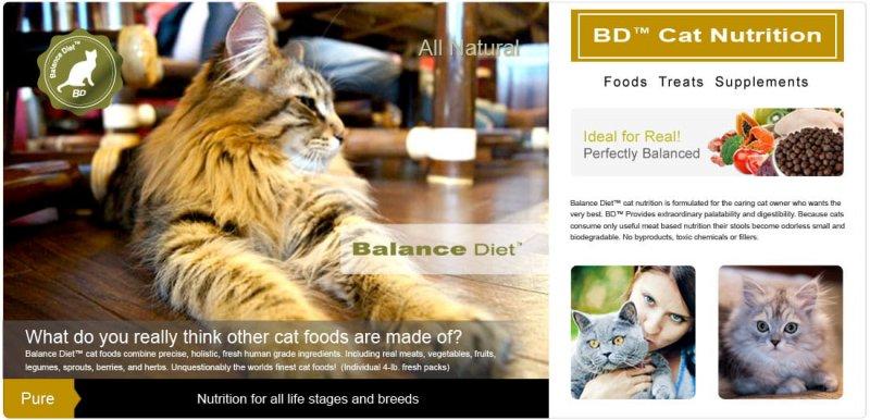 Balance Diet cat nutrition