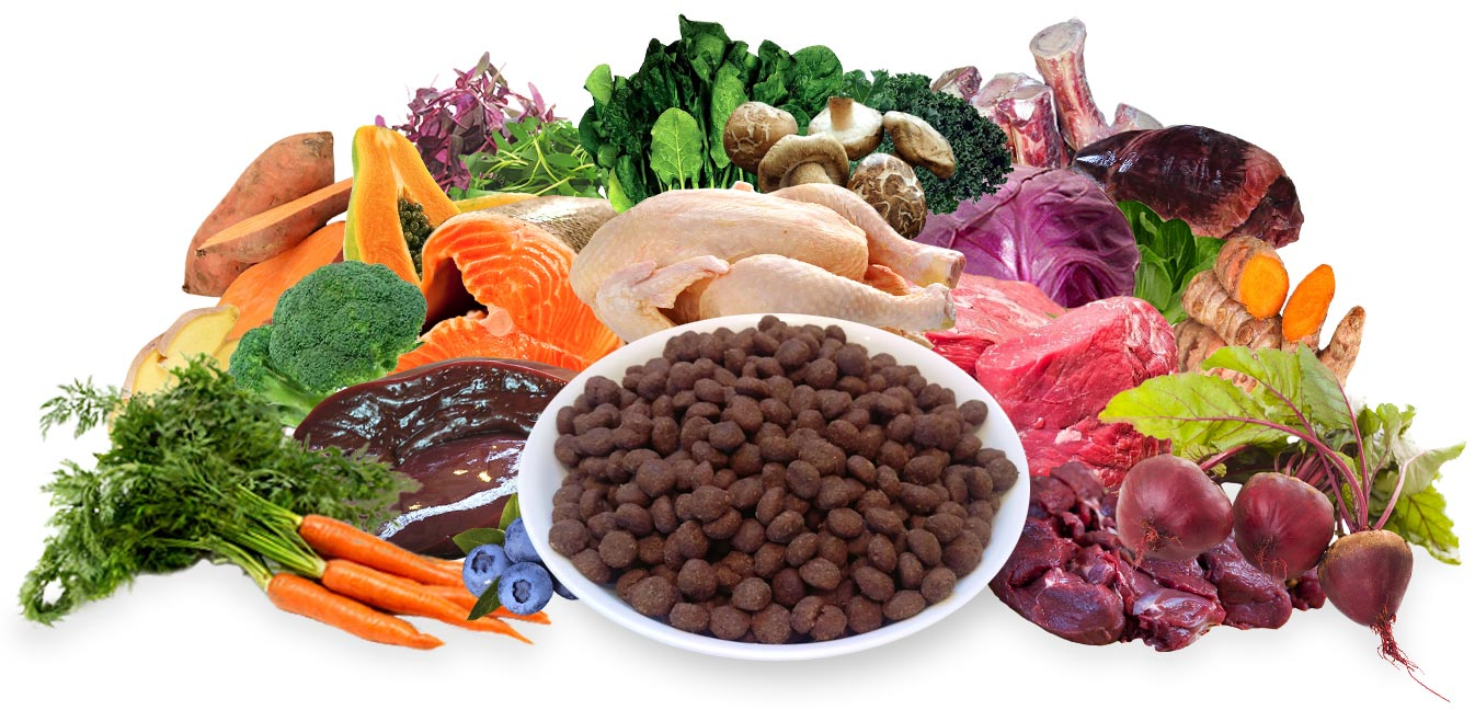 Balance Diet premium dogs food best healthy food for dogs vegies and fruits these are alkaline or acid forming foods and raw chicken,meat for strength