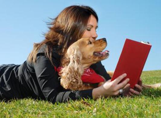 Balance Diet pets love care