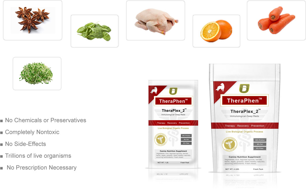 Balance Diet premium dogs food best healthy food for dogs vegies and fruits these are alkaline or acid forming foods Thera Phen is made up from these raw foods for prevention recovery