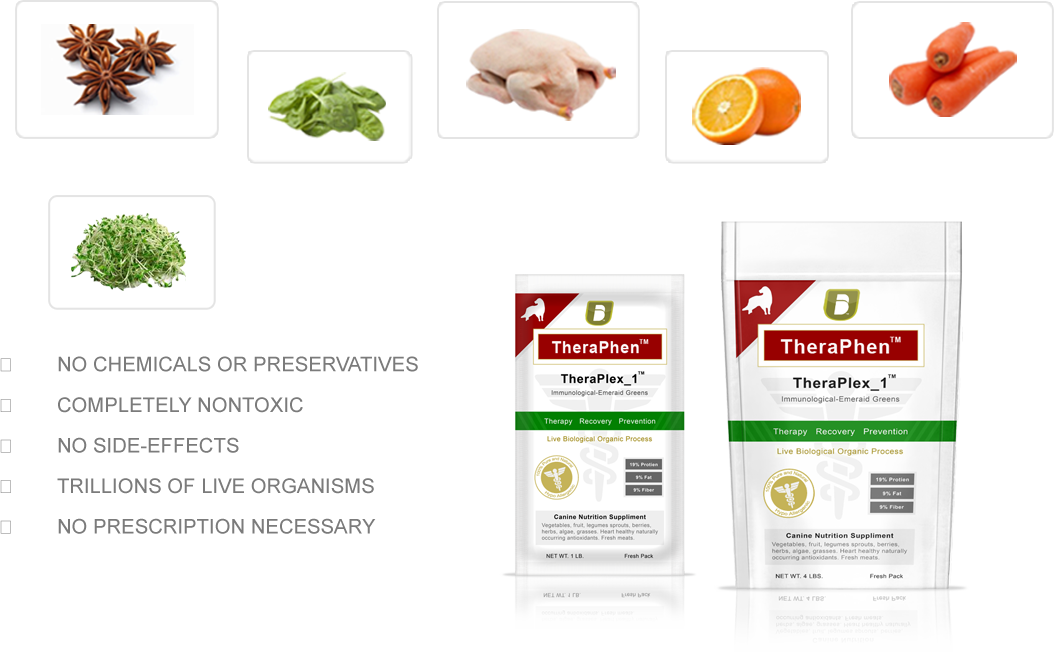 Balance Diet premium dogs food best healthy food for dogs vegies and fruits these are alkaline or acid forming foods Thera Phen is made up from these raw foods