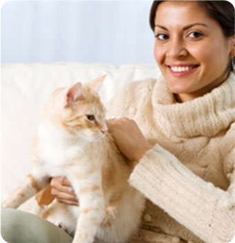 Balance Diet care of cats health